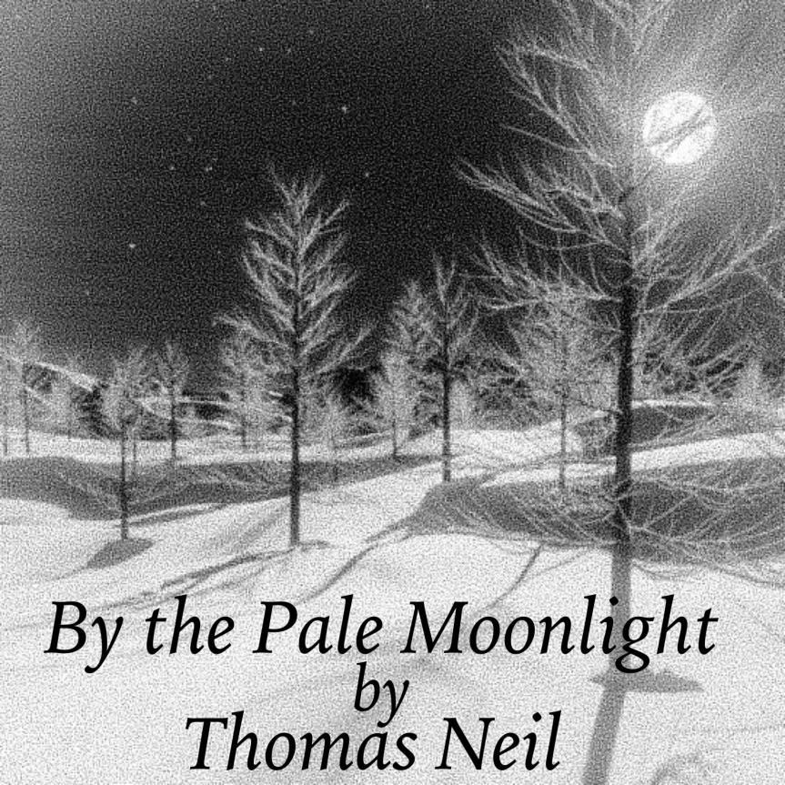 By the Pale Moonlight by Thomas Neil