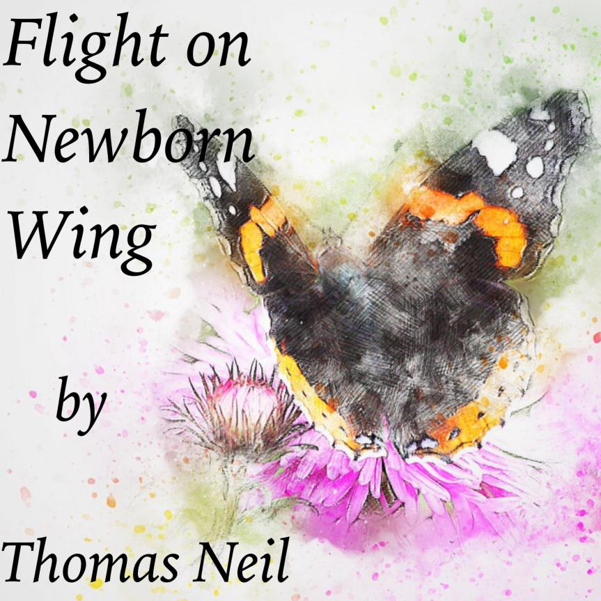 Flight on Newborn Wings by Thomas Neil