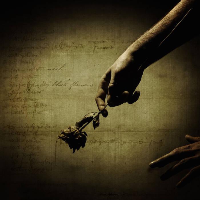 Neil Lucchetta's Album 'Black Flowers'