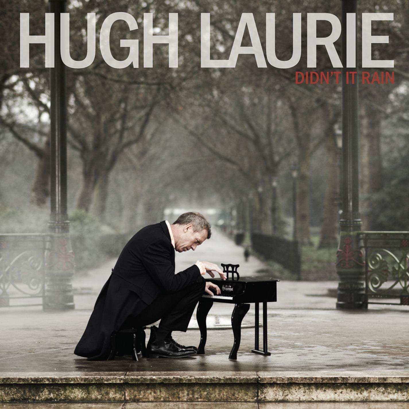 Hugh Laurie Didn't It Rain Album Artwork
