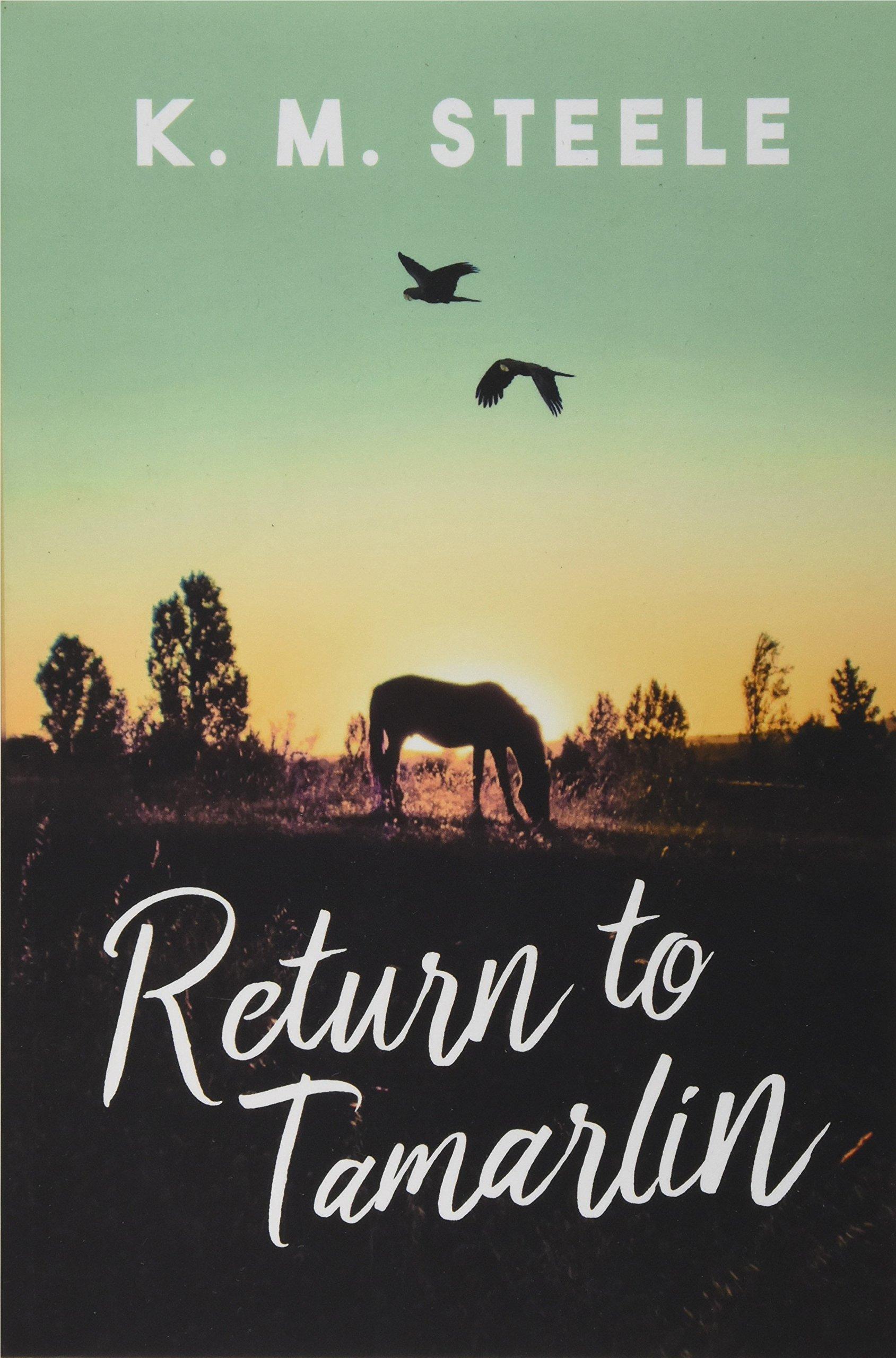 Return to Tamarlin Cover Art