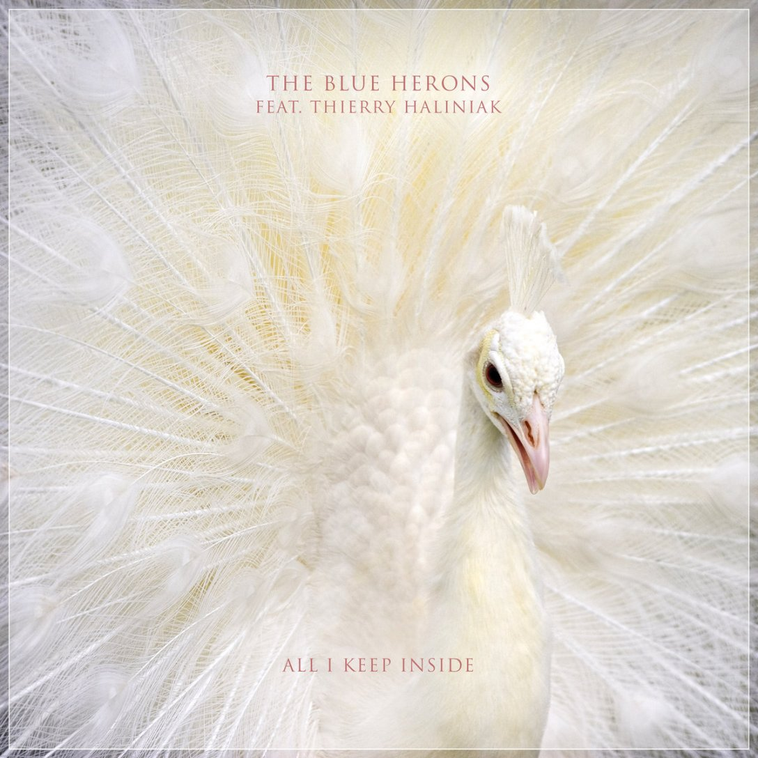 The Blue Herons single 'All I Keep Inside ft. Thierry Haliniak' Artwork