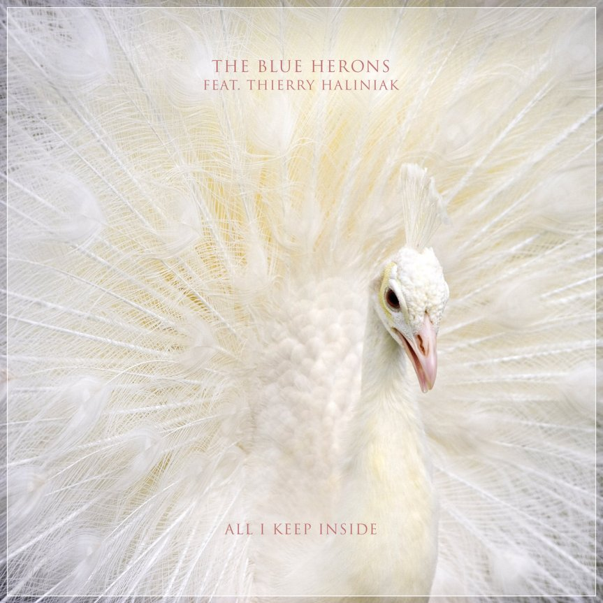 Single Review: The Blue Herons – All I Keep Inside (ft. Thierry Haliniak)