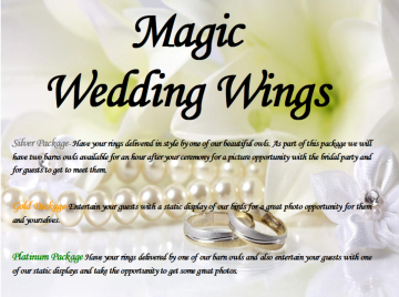 Owl Magic Wedding Packages