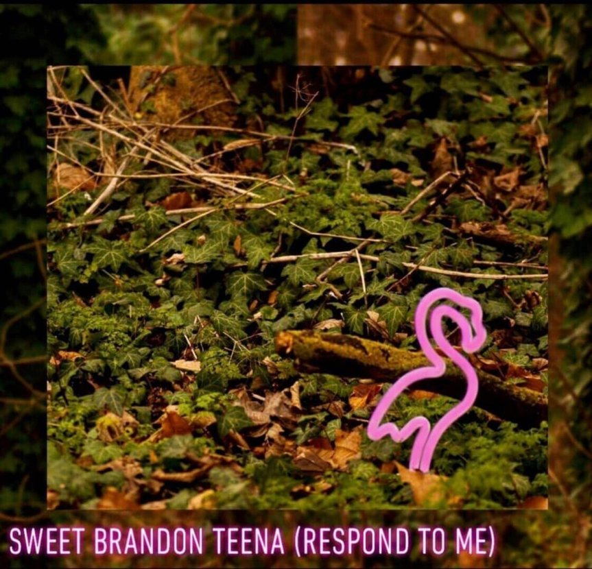Reardon Love - Sweet Brandon Teena (Respond To Me) Artwork