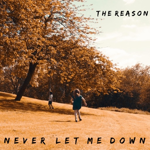 Single Review: The Reason – Never Let Me Down