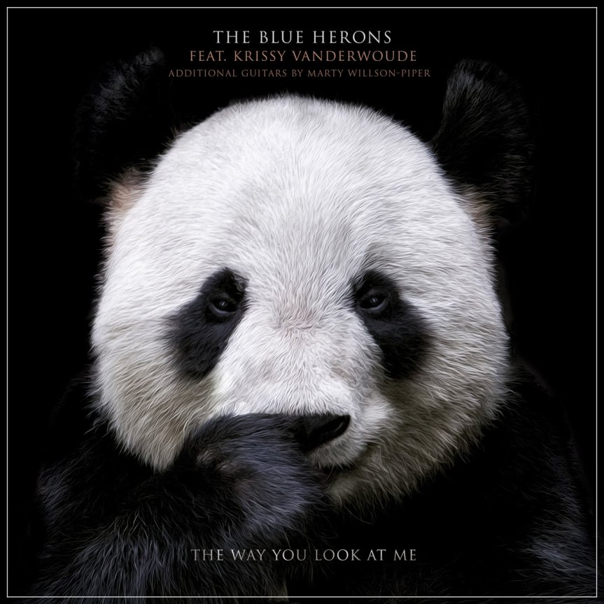 Single Review: The Blue Herons – The Way You Look At Me (ft. Krissy Vanderwoude)