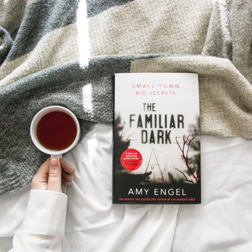 Book Review: The Familiar Dark by AmyEngel