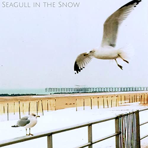 Single Review: Josh Mover & The Shakers – Seagull in the Snow
